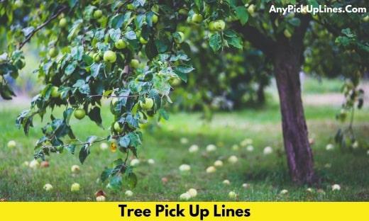 Tree Pick Up Lines